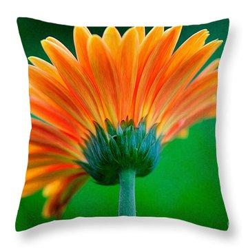 Orange Blast Throw Pillow by Lois Bryan