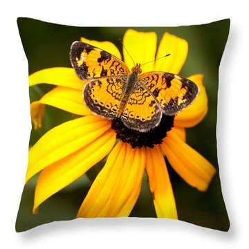 Orange Butterfly Throw Pillow by Lena Auxier