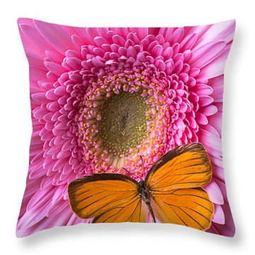 Orange Butterfly On Pink Daisy Throw Pillow by Garry Gay