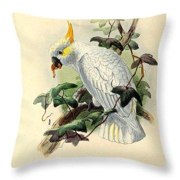 Orange Cockatoo Throw Pillow by J G Keulemans