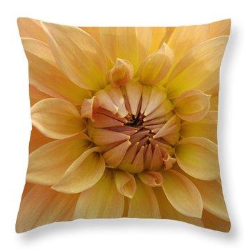 Orange Dahlia Closeup Throw Pillow by Matthias Hauser