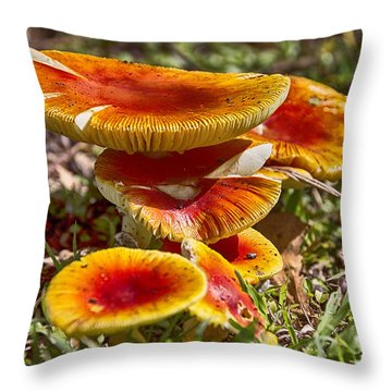 Orange V4 Throw Pillow by Douglas Barnard