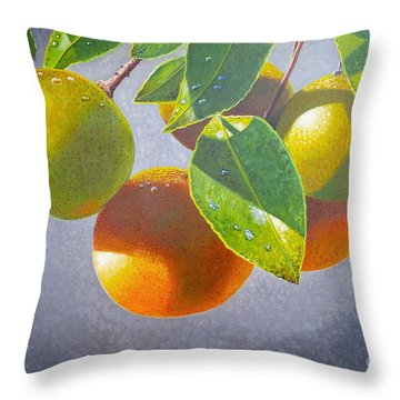 Oranges Throw Pillow by Carey Chen