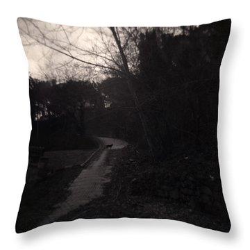 Otherwhere Throw Pillow by Taylan Apukovska