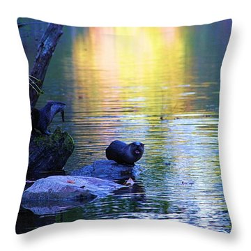 Otter Family Throw Pillow by Dan Sproul