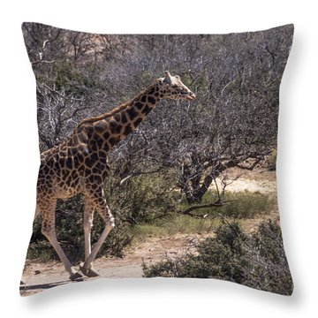 Out Of Africa Giraffe Throw Pillow by Janice Rae Pariza