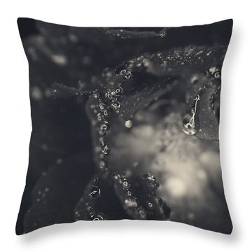 Out Of My Head Over You Throw Pillow by Laurie Search