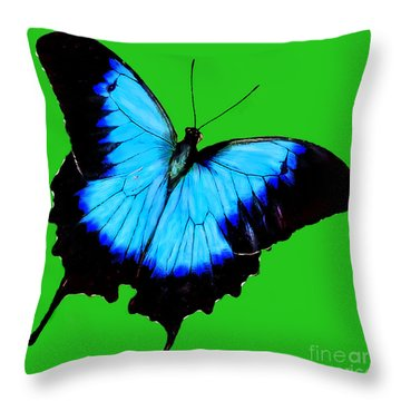Painted Butterfly Throw Pillow by Bob and Nadine Johnston