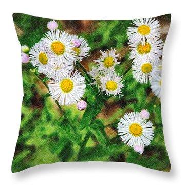 Painted Fleabane Throw Pillow by John Haldane