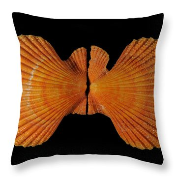 Painted Scallop Throw Pillow by Scott Camazine