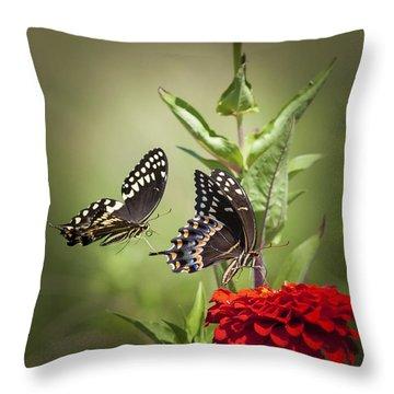 Palamedes Swallowtail Butterflies Throw Pillow by Jo Ann Tomaselli