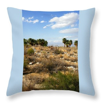 Palm Springs Indian Canyons View  Throw Pillow by Ben and Raisa Gertsberg