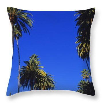 Palm Trees Along A Road, Beverly Hills Throw Pillow by Panoramic Images