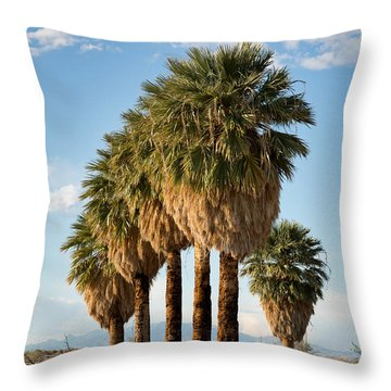 Palm Trees Throw Pillow by Jane Rix