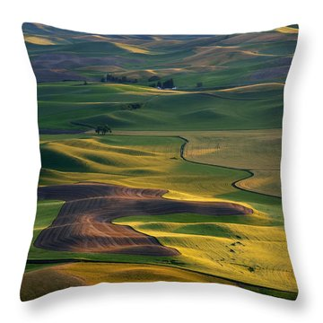 Palouse Shadows Throw Pillow by Mike  Dawson
