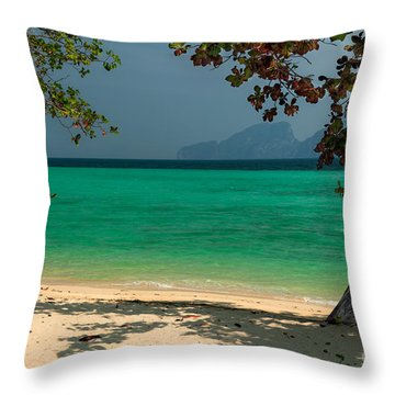 Paradise Found Throw Pillow by Adrian Evans
