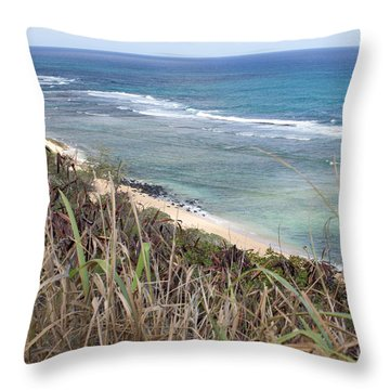 Paradise Overlook Throw Pillow by Suzanne Luft