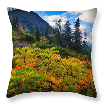 Park Butte Fall Color Throw Pillow by Inge Johnsson