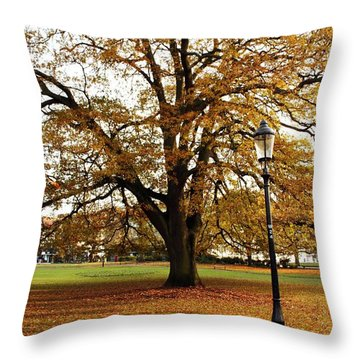 Park Life Throw Pillow by Terri Waters