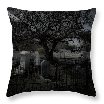 Passage Throw Pillow by Kathi Shotwell