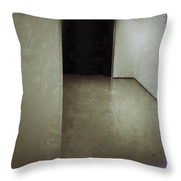 Passages Throw Pillow by David Stone