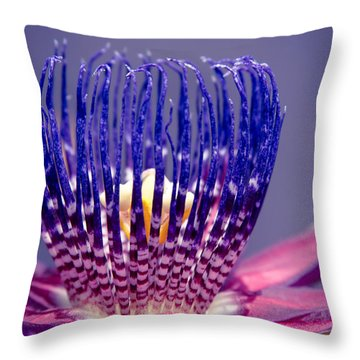 Passiflora Alata - Ruby Star - Ouvaca - Fragrant Granadilla -  Winged-stem Passion Flower Throw Pillow by Sharon Mau