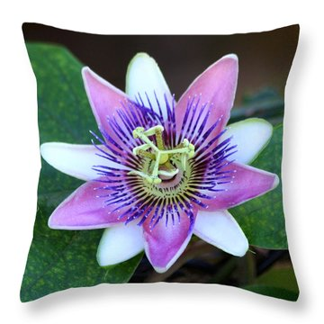 Passion Flower Throw Pillow by Art Block Collections