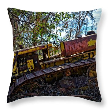 Past It's Prime Throw Pillow by Lynn Bauer