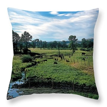 Pastoral 2 Throw Pillow by Terry Reynoldson