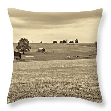 Pastoral Pennsylvania Sepia Throw Pillow by Steve Harrington