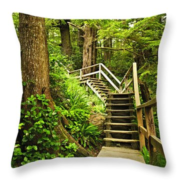 Path In Temperate Rainforest Throw Pillow by Elena Elisseeva