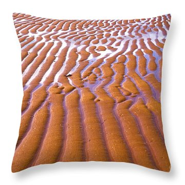 Patterns In The Sand Throw Pillow by Diane Diederich