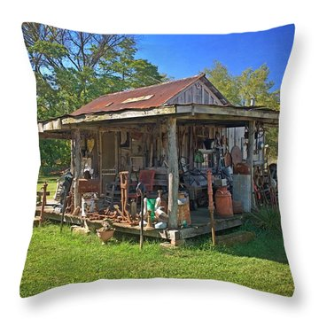 Patterson Place 1 Throw Pillow by Marty Koch