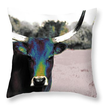 Pazzo Throw Pillow by Molly McPherson