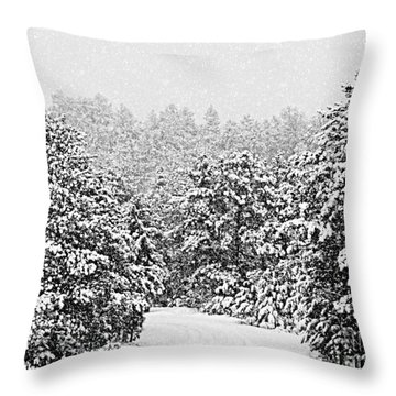 Peaceful Path Throw Pillow by Barbara Henry