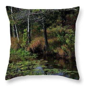 Peaceful Pond Throw Pillow by Karol Livote
