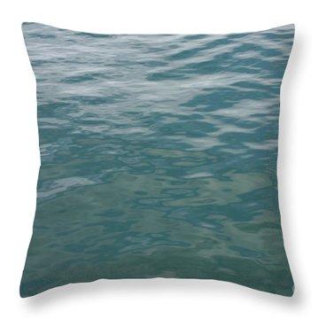 Peaceful Water Throw Pillow by Carol Groenen