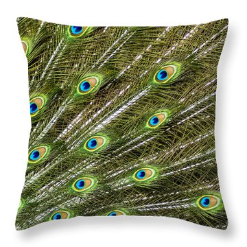 Peacock Feather Abstract Pattern Throw Pillow by Darleen Stry
