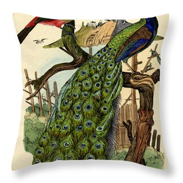 Peacock Throw Pillow by French School
