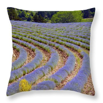 Peaking Throw Pillow by Bob Phillips