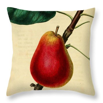 Pear 1829 Throw Pillow by Philip Ralley