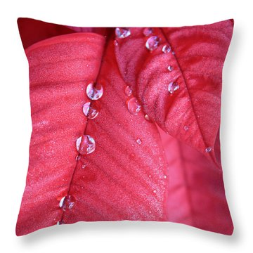 Pearls On Poinsettia Throw Pillow by Carol Groenen