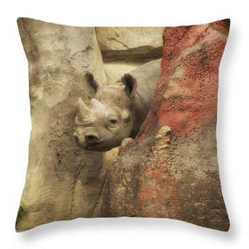 Peek A Boo Rhino Throw Pillow by Thomas Woolworth
