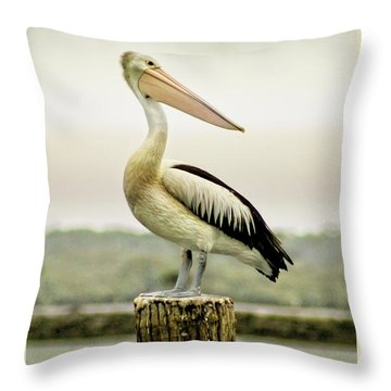 Pelican Poise Throw Pillow by Holly Kempe