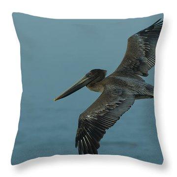 Pelican Throw Pillow by Sebastian Musial