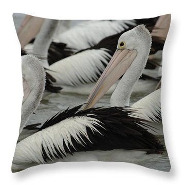 Pelicans Galore Throw Pillow by Bob Christopher