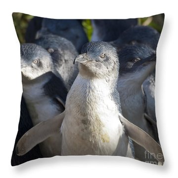 Penguins Throw Pillow by Steven Ralser