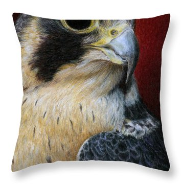 Peregrine Falcon Throw Pillow by Pat Erickson