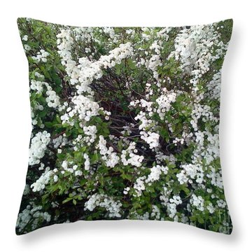 Perfect White Spring Blossoms Throw Pillow by PainterArtist FIN