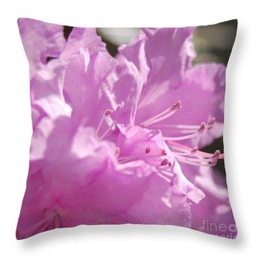 Petal Pink By Jrr Throw Pillow by First Star Art
